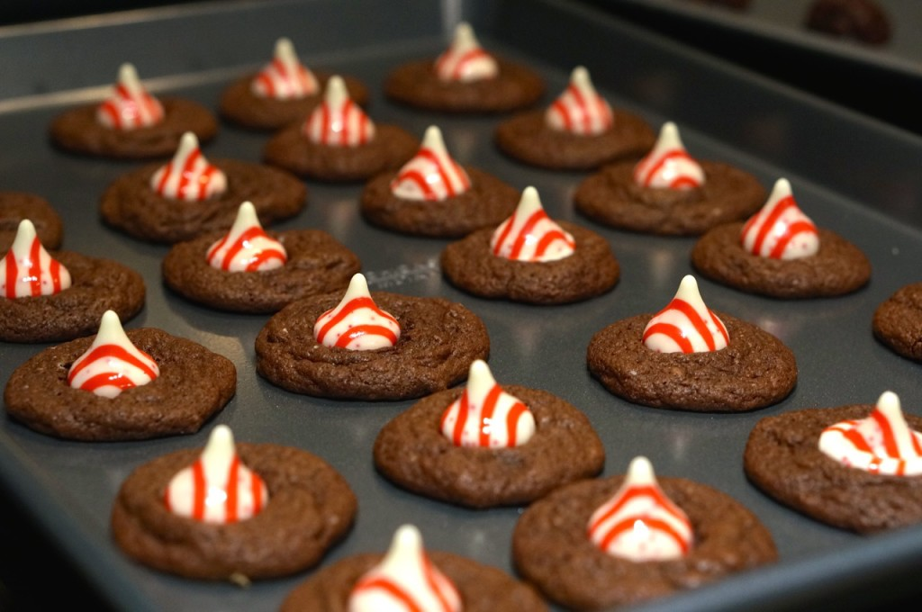 chocolate-peppermint-candy-cane-cookies