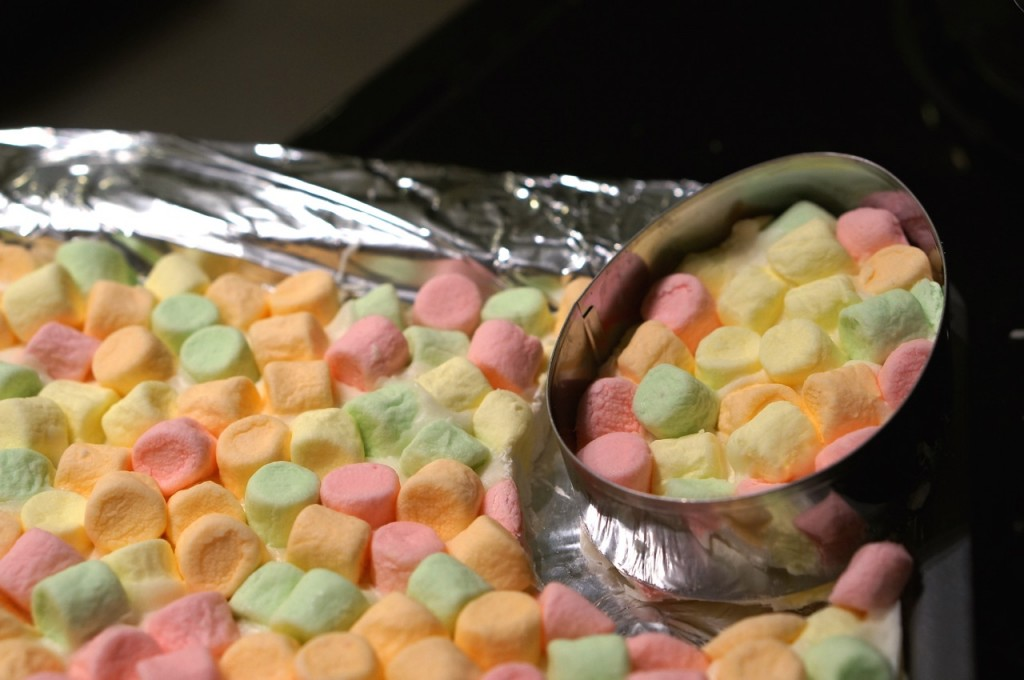 egg-cookie-cutter-marshmallows